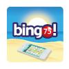 bingo movil